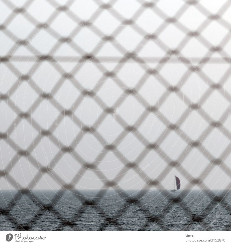 Stories from the fence (XXX) Sky Horizon Weather Baltic Sea Navigation Sailboat Fence Grating Mesh grid Wire netting Wire netting fence Water Line Network