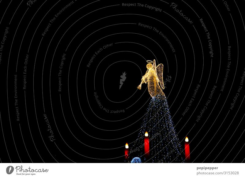 angels Night life Christmas & Advent Androgynous Body Dortmund Tourist Attraction Halo Candle Angel Sign Ornament Listen to music Esthetic Wing Fir tree