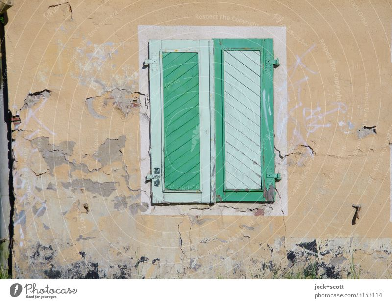 live green Style Old building Wall (building) Shutter Decoration Wood Stripe Exceptional Sharp-edged Uniqueness Positive Warmth Protection Colour Inspiration