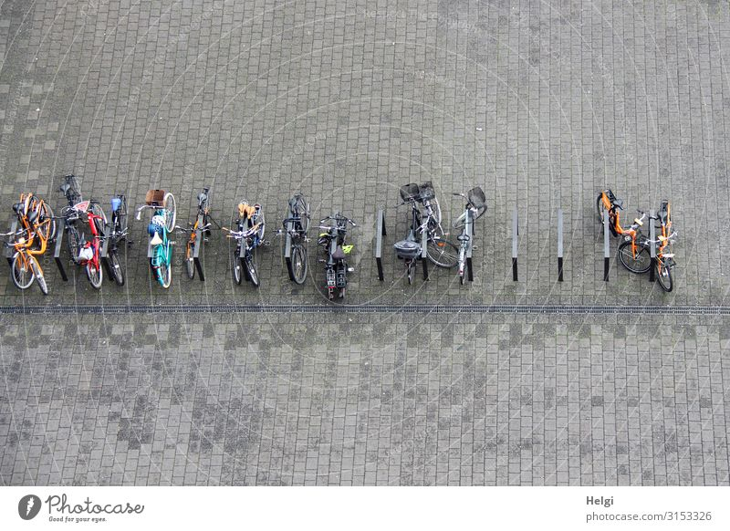 many bicycles stand connected on a large paved square, bird's eye view Hamburg Places Means of transport Cycling Bicycle Bicycle rack Bicycle lot Paving stone