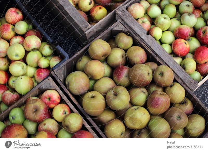 several boxes with different freshly harvested apples Food Fruit Apple Nutrition Organic produce Vegetarian diet Crate Wood Lie Authentic Sharp-edged Fresh