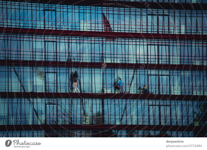 Cleaning windows Work and employment Workplace Window Services Brush Human being Masculine Adults 3 30 - 45 years Summer Beautiful weather River bank Berlin