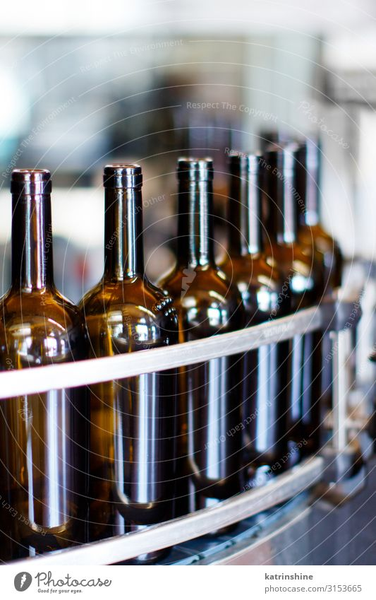 Glass bottles in bottling machine Bottle Industry Technology Modern wine-making Winery Filling machine automated conveyor drink filling glass grapevine Produce