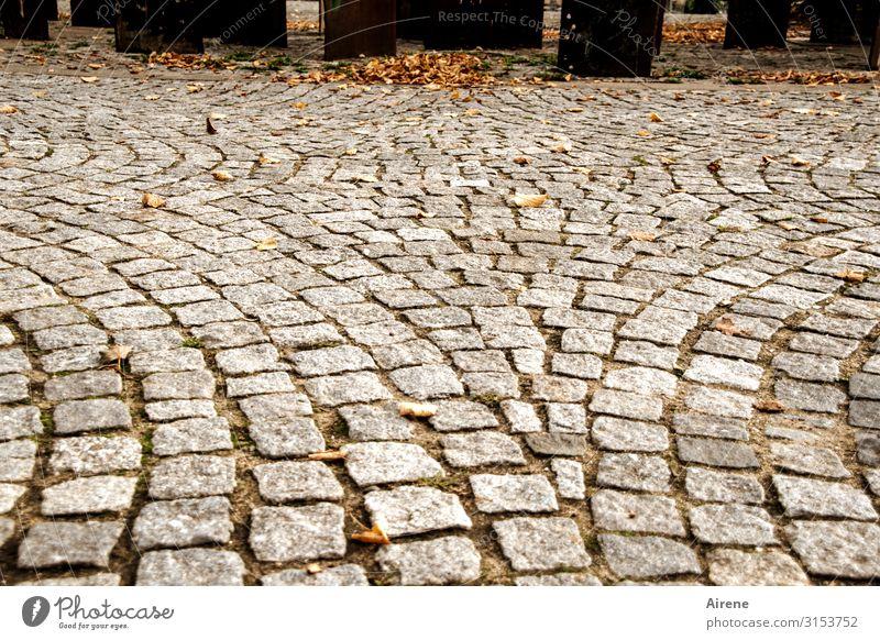 Town Loneliness Far-off places Autumn Cold Orange Brown Gray Perspective Empty Places Clean Monument Cobblestones Autumn leaves Freeze