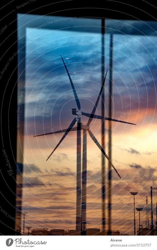 alternative framework conditions | UT Hamburg Energy industry Wind energy plant Renewable energy Sky Sunrise Sunset Beautiful weather Port of Hamburg