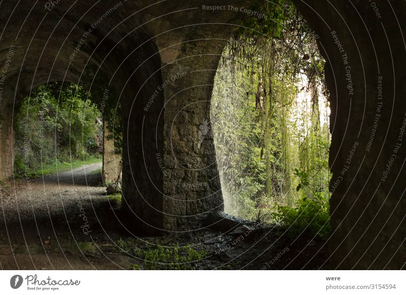 old road with tunnel on the shores of Lake Garda Deserted Tunnel Manmade structures Wall (barrier) Wall (building) Traffic infrastructure Old Retro recreation