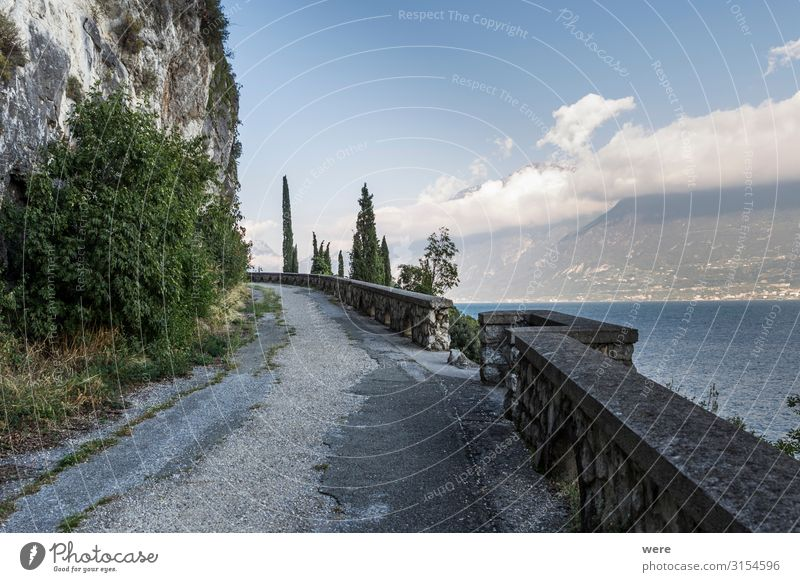 old road on the shores of Lake Garda Vacation & Travel Tourism Far-off places Summer vacation Sun Tunnel Relaxation Driving recreation car damaged decay