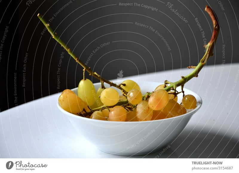 Sweet grapes Food Fruit Bunch of grapes Nutrition Organic produce Vegetarian diet Diet Dessert Simple Fresh Healthy Delicious Natural Yellow Gold Gray Green