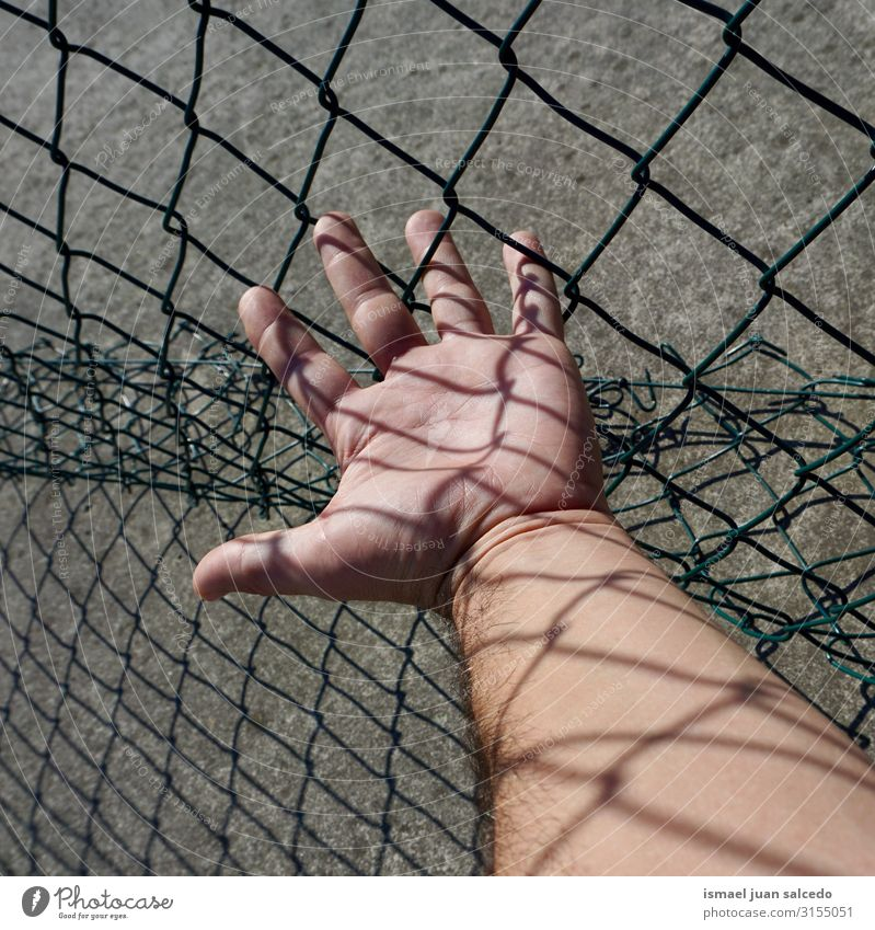 man hand grabbing a metallic fence Hand Fence Wire Safety (feeling of) Metal Protection Man Human being Fingers body part Arm Steel Street Exterior shot Freedom
