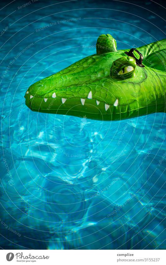 Inflatable crocodile in pool Joy Healthy Swimming pool Swimming & Bathing Vacation & Travel Tourism Expedition Summer Summer vacation Sun Sunbathing Beach Ocean