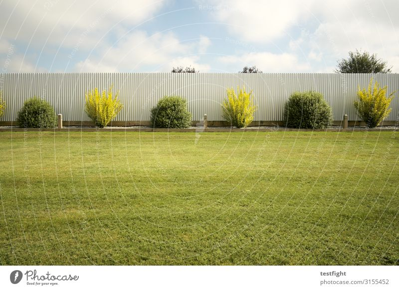 Plant Green Grass Garden Wall (barrier) Bushes Lawn Fence Foliage plant