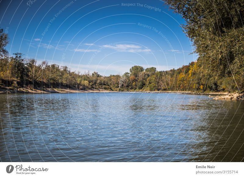 On the ferry across the river Inn Nature Landscape Plant Water Autumn Forest River bank Driving Hiking Colour photo Exterior shot Day