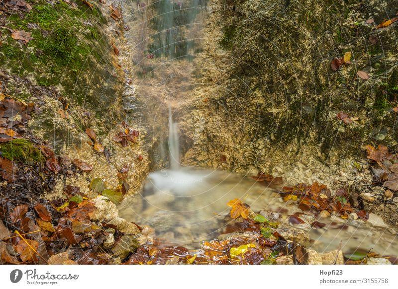 Small waterfall near Berchtesgaden Environment Nature Landscape Water Autumn Beautiful weather Moss Leaf Alps Mountain River Waterfall Fitness Going Walking