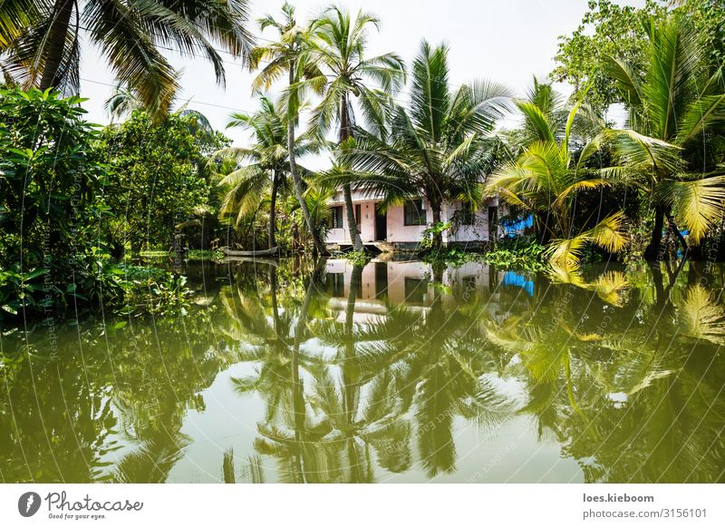 House in the Kerala backwaters Vacation & Travel Tourism Adventure Far-off places Sightseeing Summer Nature Exotic Coast River bank