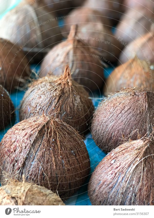 Empty Coconut Shells Fruit Cooking oil Organic produce Vegetarian diet Juice Skin Health care SME Nature Container Oil Diet Natural Brown Appetite Tradition