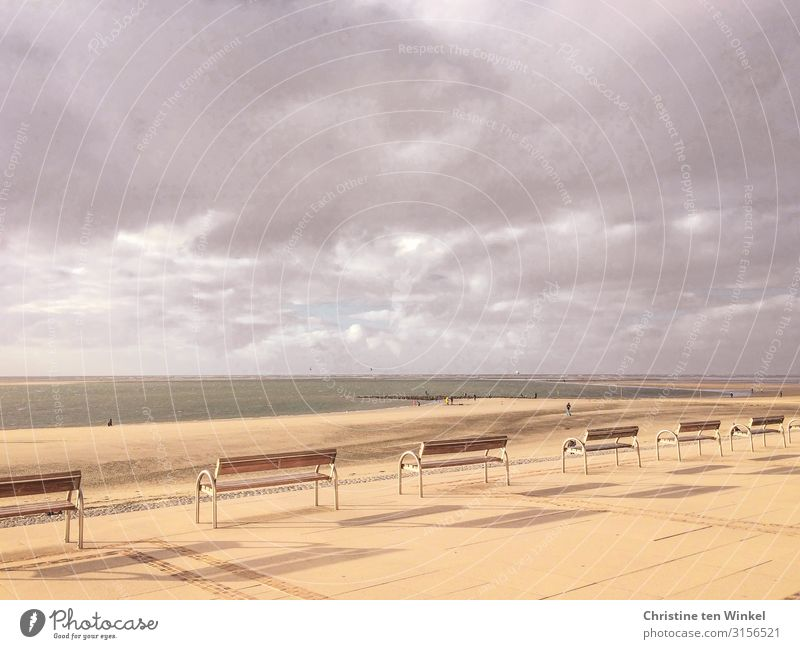 Beach promenade on Borkum Vacation & Travel Tourism Far-off places Freedom Ocean Human being Sand Water Earth Sky Clouds Sunlight Coast North Sea Island Bench