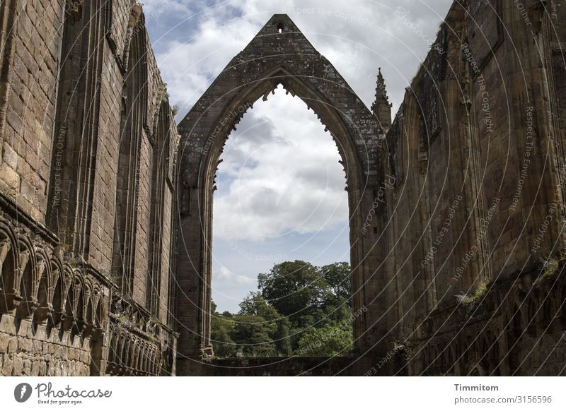 Bolton Abbey Vacation & Travel Sky Clouds Plant Tree Park Great Britain Yorkshire Church Ruin Wall (barrier) Wall (building) Tourist Attraction Stone Esthetic