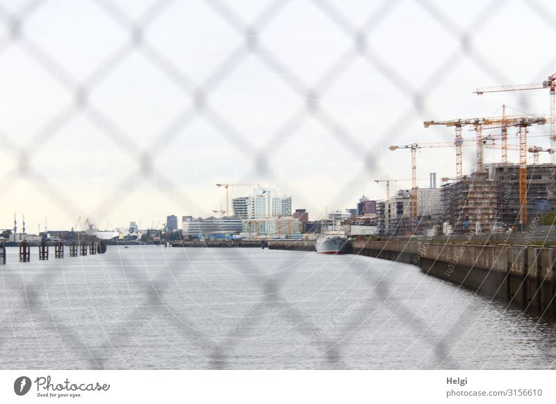 View through a fence to the Elbe, buildings and cranes of a construction site on the bank River bank Hamburg Port City Manmade structures Building Architecture