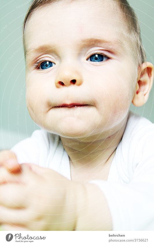 a thinker Baby Infancy Son Child blue eyes Boy (child) Face Love 0 - 12 months Interior shot Colour photo portrait observantly Cute already Meditative Dream