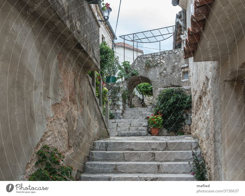 Vacation & Travel Blue Green Relaxation Calm Wall (building) Wall (barrier) Brown Gray Stairs Old town Village Croatia Brsec