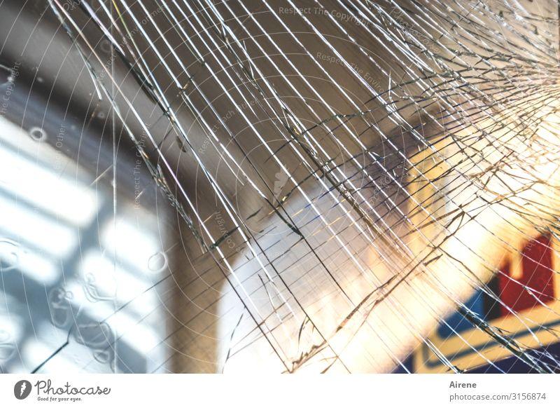 Hatching glass broken | UT Hamburg Train station Manmade structures Station hall Commuter train station Glass door Network Crack & Rip & Tear Broken
