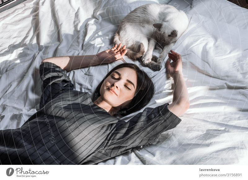 Woman lying in bed and with her cat and pile of books adoption Bed Bedclothes Bedroom Blanket Duvet Cat Cozy Faceless Fingers Fur coat Young woman Hand Home