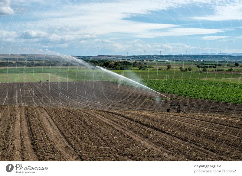 Watering green plants and plowed soil. Nutrition Summer Work and employment Industry Tool Technology Metal Growth Green sprinkler Farm panorama Irrigation