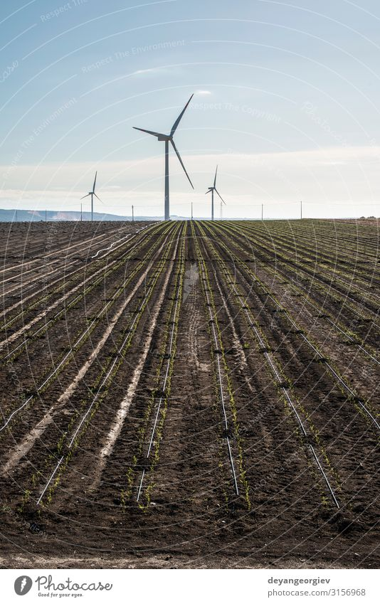 Wind generator in agriculture land. Sky Nature Summer Blue Landscape Clouds Environment Earth Technology Energy Industry Farm Generation Sustainability