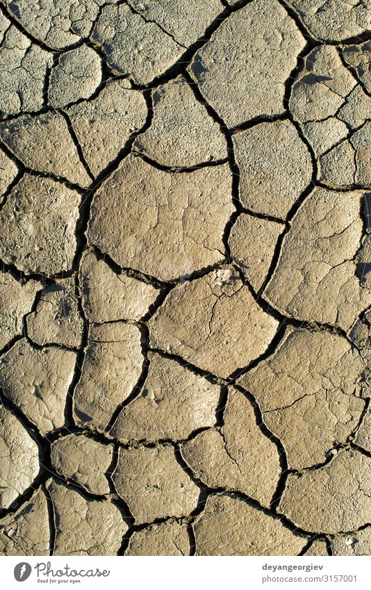 Cracked soil texture. Hard shadows and sun. Dried ground. Summer Environment Nature Earth Climate Drought Hot Natural Brown Crack & Rip & Tear Consistency dry