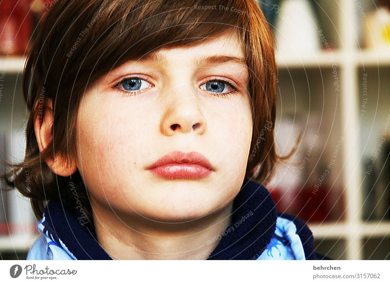 . expectant Expectation Dream Love Interior shot Colour photo pretty observantly blue eyes Close-up Child Boy (child) Family & Relations Infancy Eyes Nose Mouth