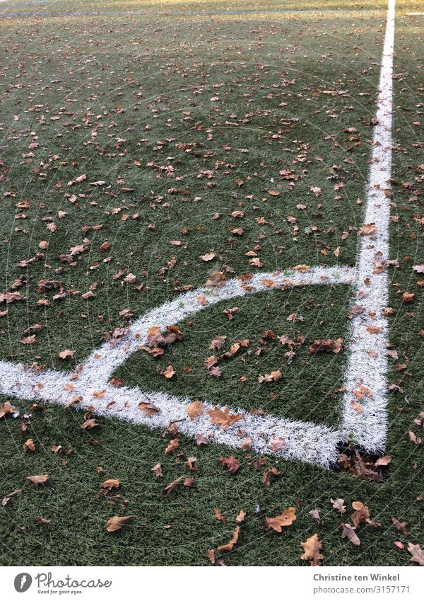 soccer field corner Leisure and hobbies Playing Football pitch Autumn Leaf Artificial lawn Signs and labeling Line Authentic Exceptional Dirty Sharp-edged Large