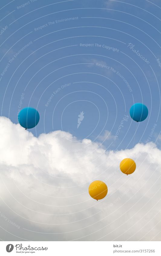 Four balloons in yellow and blue on a string, flying up into the air at a festival outside, into the blue sky with clouds l 1600 Freedom Party Event