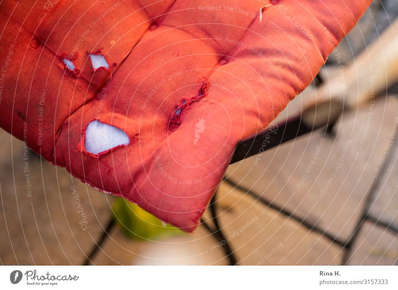 worn Cushion Authentic Broken Red Transience Chair Hollow Colour photo Deserted Shallow depth of field Bird's-eye view