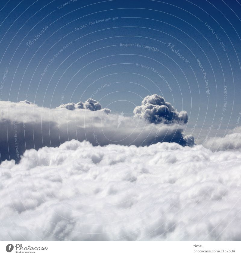 Cloud 7 | lifted off cloud Beautiful weather Above Flying Horizon Absorbent cotton Air Wind outlook panorama Freedom Universe Atmosphere travel