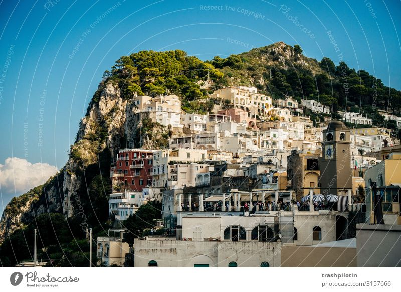 Vacation & Travel Far-off places Tourism Freedom Rock Trip Europe Adventure Italy Tourist Attraction Sightseeing Port City Cruise Capri