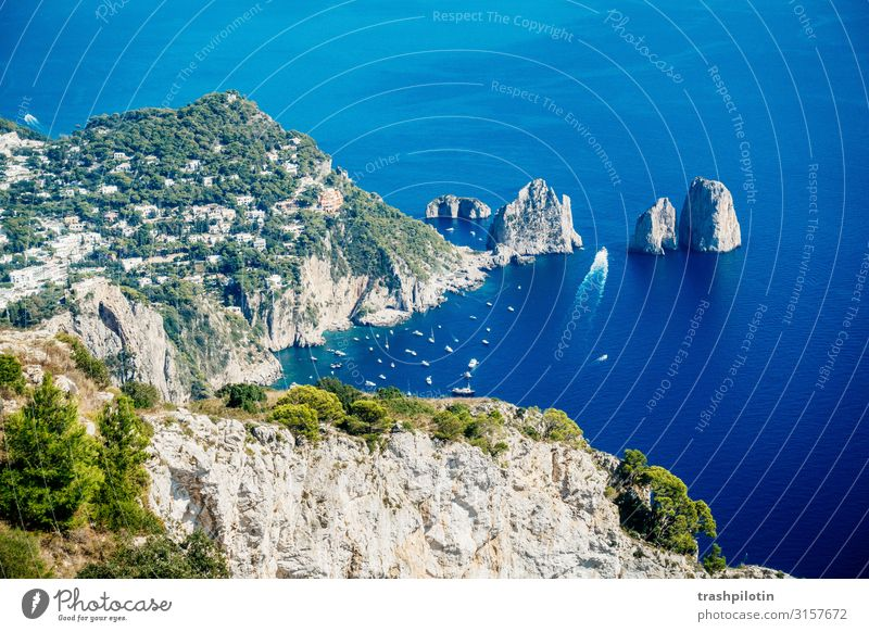 capri Vacation & Travel Tourism Trip Adventure Far-off places Freedom Sightseeing City trip Cruise Summer Summer vacation Sun Ocean Island Waves Nature