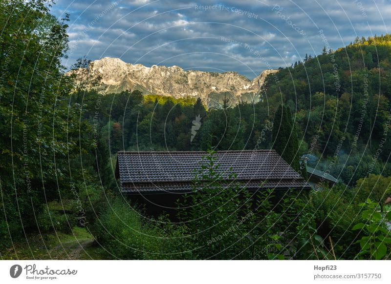 Alps in the Berchtesgaden region Environment Nature Landscape Plant Sky only Sun Autumn Beautiful weather Tree Forest Mountain Peak Hut Going Walking Hiking