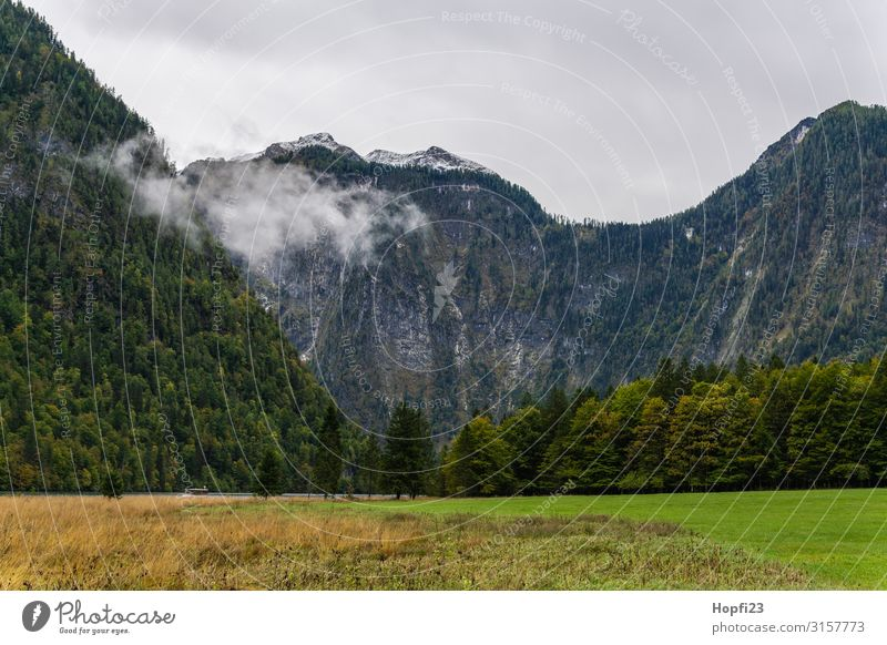 Alps in the Berchtesgaden region Environment Nature Landscape Plant Sky only Clouds Autumn Weather Fog Tree Grass Forest Rock Mountain Peak Diet Movement