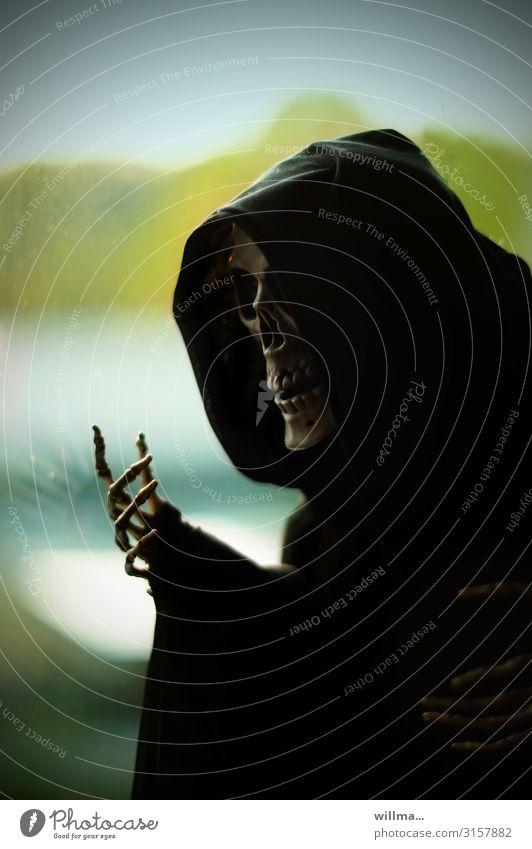 Hand Death Fear Threat Thin Diet Creepy Hallowe'en Hooded (clothing) Death's head Skeleton Cape Scared Thriller The Grim Reaper Bone