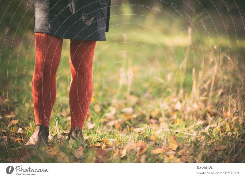 nostalgic in autumn Human being Feminine Young woman Youth (Young adults) Woman Adults Life 1 13 - 18 years 18 - 30 years Art Environment Nature Autumn Climate