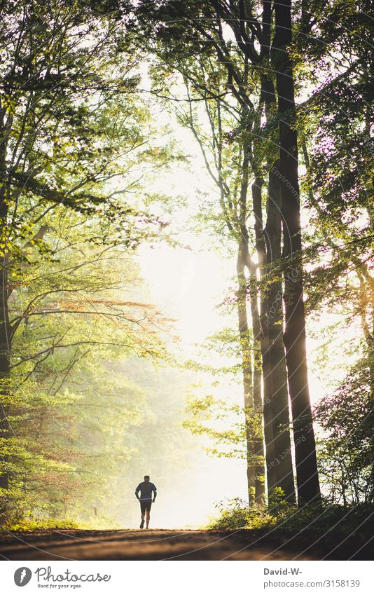 Human being Nature Healthy Eating Man Landscape Calm Forest Far-off places Adults Life Autumn Environment Senior citizen Spring Contentment