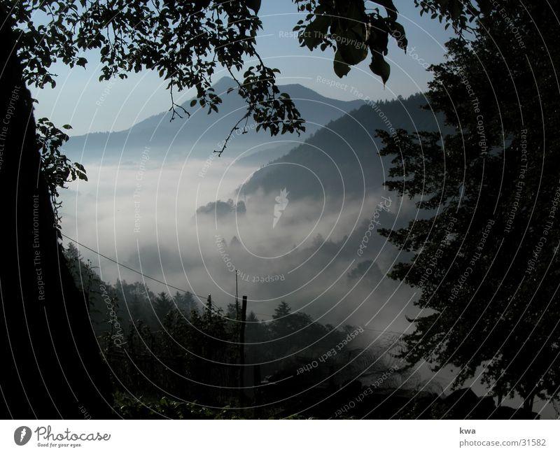 ground fog Ground fog Federal State of Lower Austria Moody Autumn Mountain