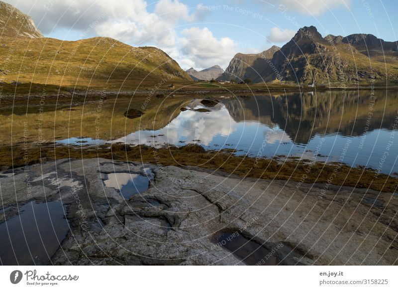 Vacation & Travel Nature Landscape House (Residential Structure) Calm Far-off places Mountain Coast Tourism Rock Scandinavia Norway Puddle Symmetry Fjord Algae