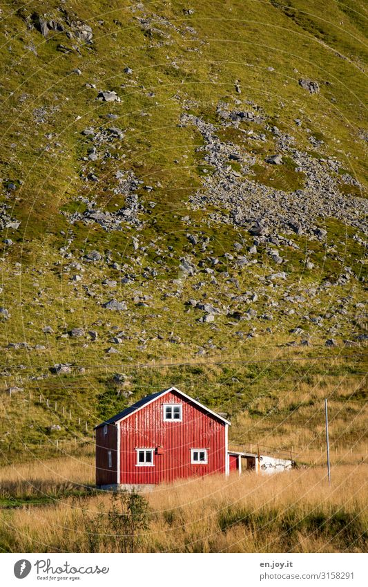Vacation & Travel Town Green Red House (Residential Structure) Loneliness Environment Meadow Grass Tourism Facade Living or residing Hill Hut Scandinavia Norway