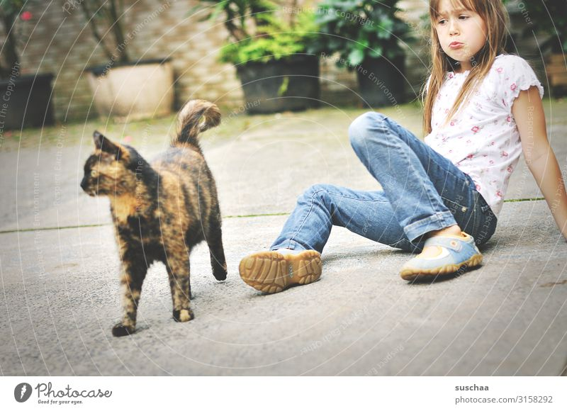 cat goes away Child Girl Cat Domestic cat Farm Courtyard Infancy Childhood memory Animal Pet Sulk Pout Insulted Emotions Sadness Disappointment Cancelation