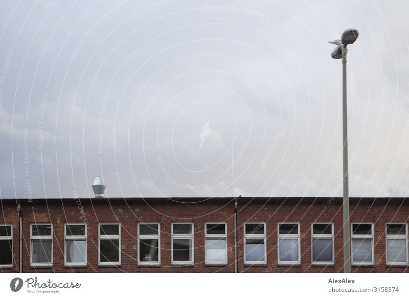 HH UT 19 | Brick office building with lantern Office Environment Landscape Autumn Winter Bad weather Wall (barrier) Wall (building) Facade Street lighting