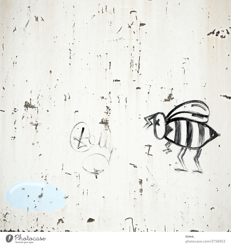 Maja is angry Art Painting and drawing (object) Wall (barrier) Wall (building) Bee Stone Concrete Graffiti Determination Life Curiosity Surprise Mistrust Envy