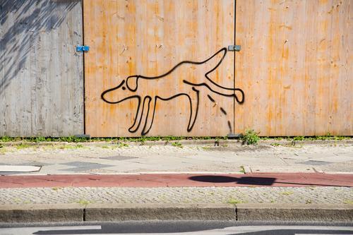 walk the dog Dog Line Beautiful weather Concrete Sidewalk Street art Comic Subculture Cycle path Berlin zoo Hoarding