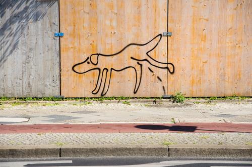 Wild peeing at construction fence Subculture Street art Sidewalk Cycle path Hoarding Comic Walk the dog Exceptional Moody Ignorant Creativity Ease Break Urinate