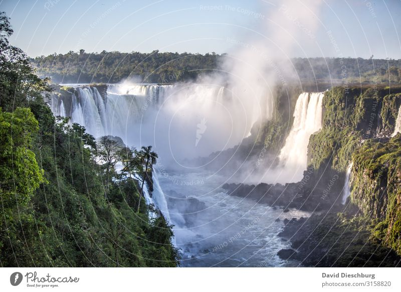 iguassu Vacation & Travel Tourism Trip Environment Nature Landscape Plant Cloudless sky Beautiful weather Forest Virgin forest River Waterfall